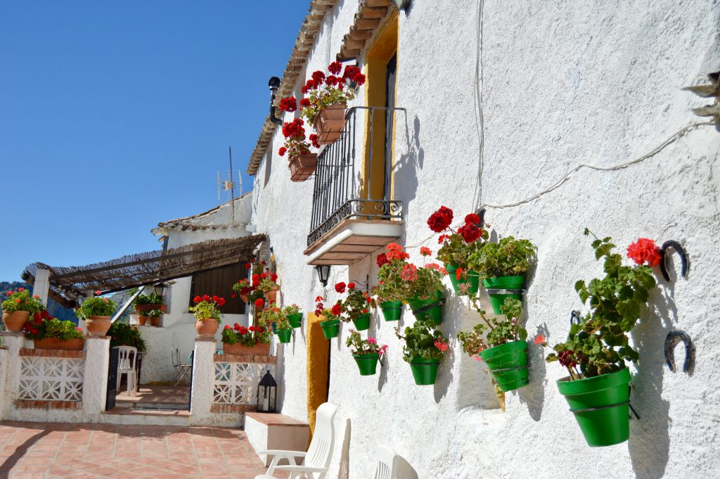 Cortijo patio
