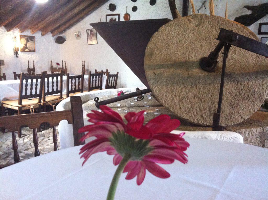 Reuniones familiares en el Cortijo Pulgarín Bajo