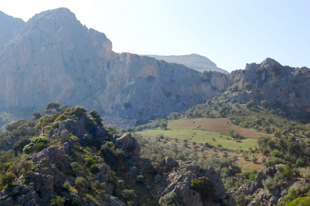 Entorno Cortijo Pulgarín Bajo